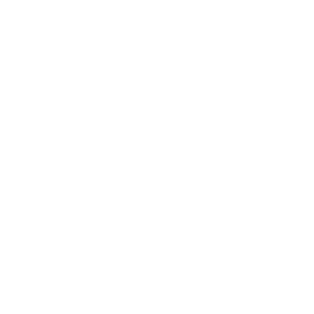 Real Capital Investments
